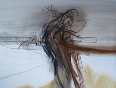 drawing16